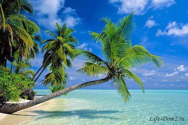 «Остров любви» - место для «волшебства»?