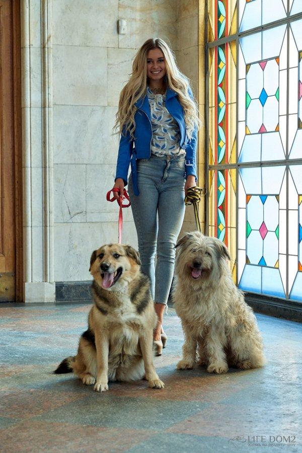 Фотосессия Елены Хроминой с очаровательными собаками Хлоей и Долли
