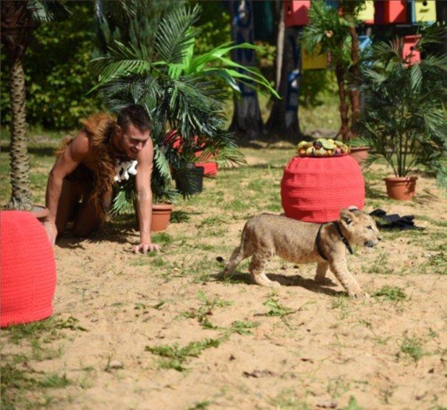 Фотосессия Милены Безбородовой и Леши Безуса со львенком