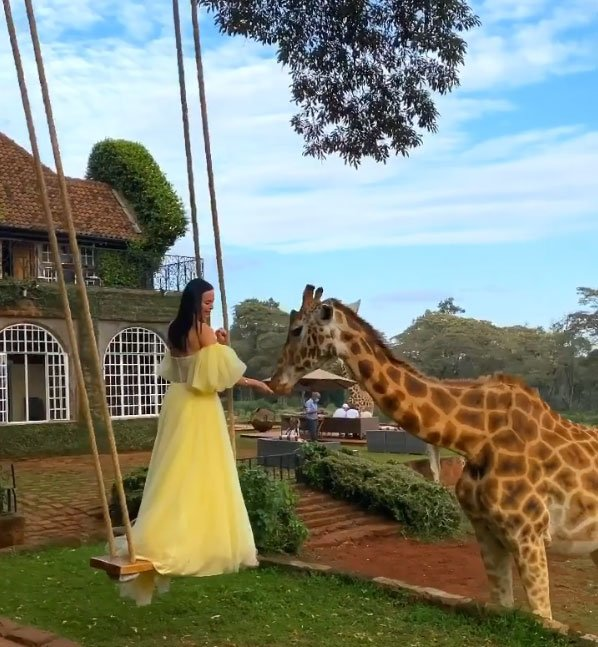 Красивая фотоссесия Виктории Романец и Антона Гусева с жирафами