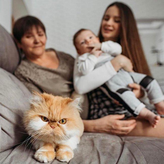 Красивая фотоподборка семьи Чуевых